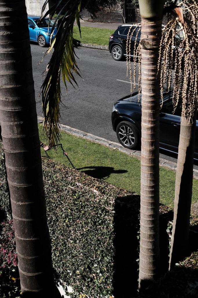 Kiwi Berm